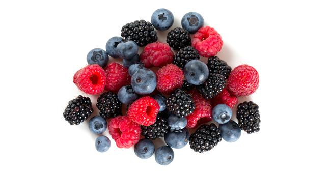 BRAND'S® ingredients berries detail page